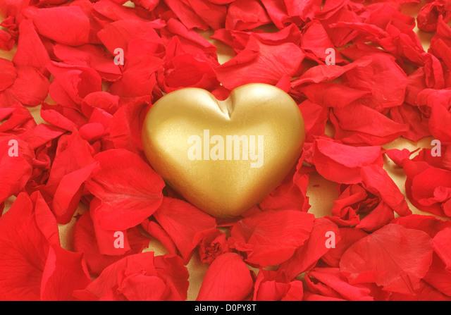 gold frame rose petals - photo #35