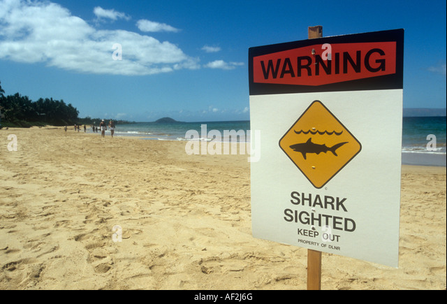 Jaws poster stock photos jaws poster stock images alamy for Little fairy door shark tank