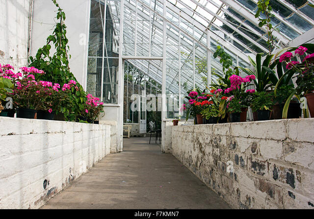 Pleasing Inveresk Stock Photos  Inveresk Stock Images  Alamy With Engaging Inveresk Lodge Garden Inside Sun Room  Stock Image With Delightful National Botanical Garden Of Georgia Also Where To Buy Rocks For Garden In Addition Corner Garden Sheds Uk And Royal Botanical Gardens Ontario As Well As Little Tikes Garden Cottage Additionally Garden Lopper From Alamycom With   Engaging Inveresk Stock Photos  Inveresk Stock Images  Alamy With Delightful Inveresk Lodge Garden Inside Sun Room  Stock Image And Pleasing National Botanical Garden Of Georgia Also Where To Buy Rocks For Garden In Addition Corner Garden Sheds Uk From Alamycom