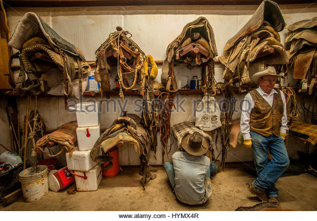 The Saddle Room Stock Photos & The Saddle Room Stock Images - Alamy