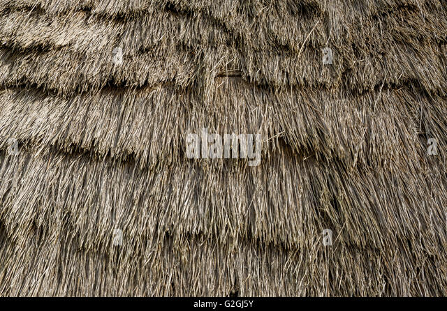 Thatched Roof Texture Of Old Colonistu0027s House At Madeira Island.   Stock  Image