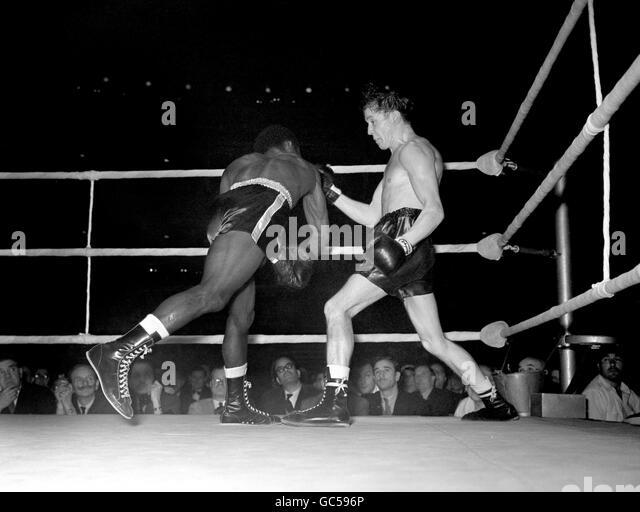 hogan bassey boxing