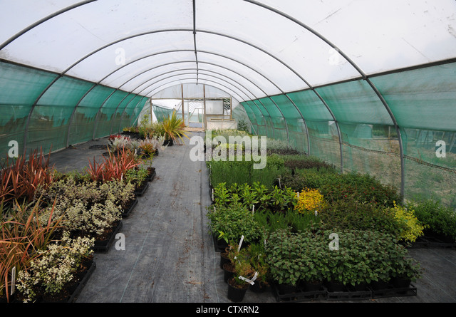 Plastic Sheet Garden Stock Photos Plastic Sheet Garden Stock