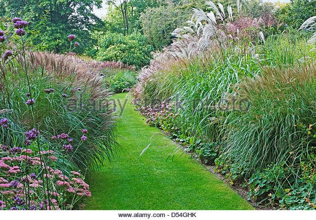 Ornamental grass border 100 images snake bark maple for Ornamental grass border design