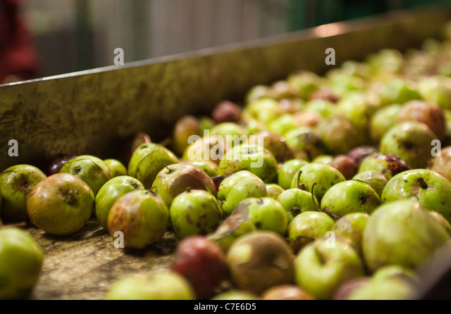 Apple Orchard Cider Press Stock Photos & Apple Orchard Cider Press ...