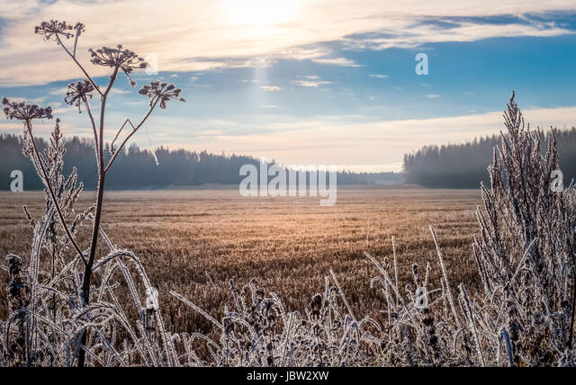 Scenic and bright landscape with sunrise at frosty autumn morning - Stock Image