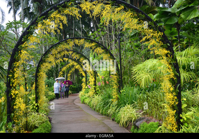 Singapore Botanical Gardens, Singapore   Stock Image