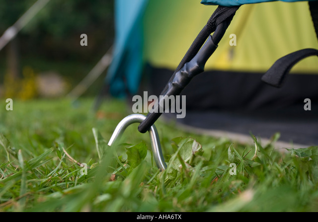 Tent peg and guy rope c&ing in Norway - Stock Image & Tent Peg Stock Photos u0026 Tent Peg Stock Images - Alamy