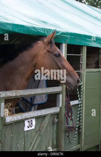 Eventer Stock Photos Amp Eventer Stock Images Alamy