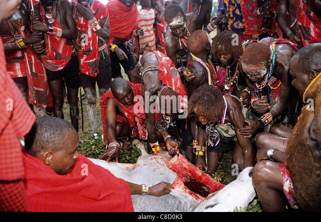 Image Gallery: Maasai Weddings