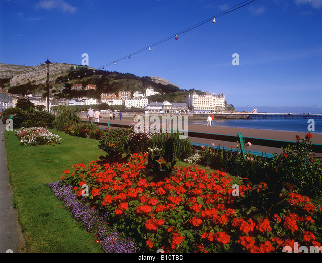Seafront Flower Gardens Pier Stock Photos & Seafront ...