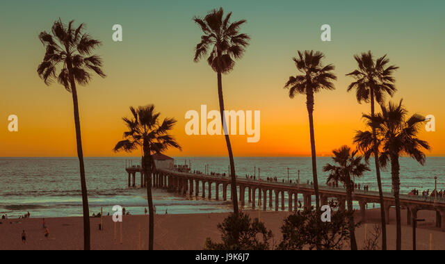 Palm trees on Manhattan Beach at sunset, Los Angeles. California. - Stock Image