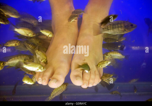 Tickling feet stock photos tickling feet stock images for Fish that eat dead skin