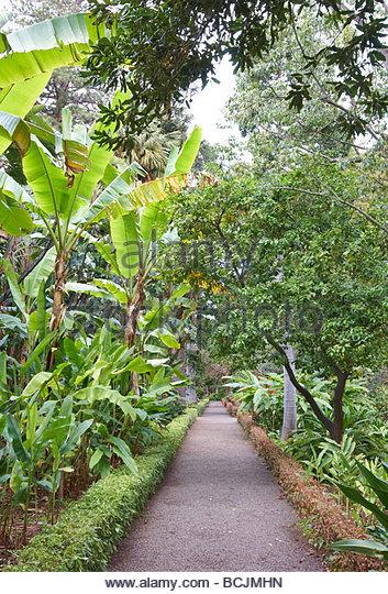 Gartenidylle stock photos gartenidylle stock images alamy for Jardin botanico de tenerife