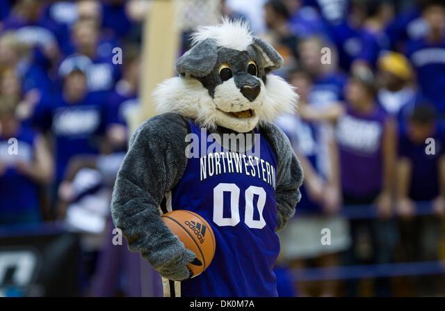 Willie The Wildcat Basketball