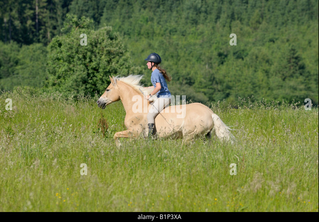 how to ride a horse without a saddle or bridle