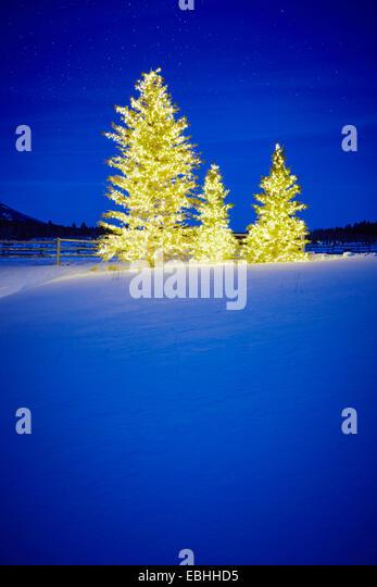 Christmas Lights Snow Night Stock Photos & Christmas Lights Snow ...