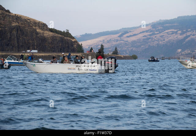 Upriver stock photos upriver stock images alamy for Columbia river salmon fishing