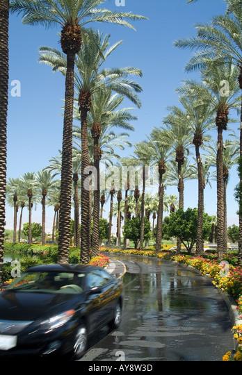 Stock driveway stock photos stock driveway stock images for Desert motor palm desert ca