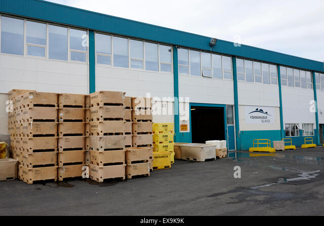 Fish auction market stock photos fish auction market for Fish market reykjavik