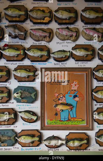 Arkansas fish stock photos arkansas fish stock images for Flying fish little rock