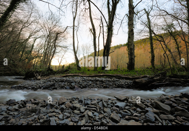 River Wyre Stock Photos Amp River Wyre Stock Images Alamy
