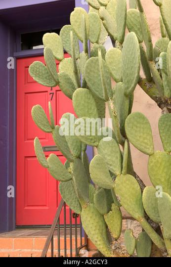 USA, Arizona, Tucson: Presidio Historic District Red Door U0026 Prickly Pear  Cactus