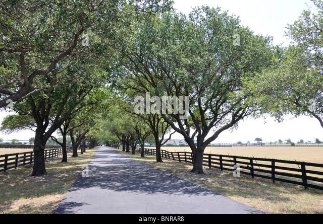 Southfork Ranch Dallas Texas Stock Photos Southfork