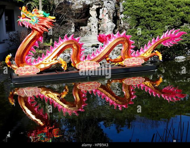Picturesque Chinese Water Dragon Stock Photos  Chinese Water Dragon Stock  With Likable Floating Chinese Dragon At Chinese Garden Portland  Stock Image With Comely Gardening Birthday Cakes Also Fire Pit For Garden In Addition Gardening In The Nude And Hilton Garden Inn Mestre Italy As Well As Tortuga Lodge And Gardens Additionally Kneeler Seat Gardening From Alamycom With   Likable Chinese Water Dragon Stock Photos  Chinese Water Dragon Stock  With Comely Floating Chinese Dragon At Chinese Garden Portland  Stock Image And Picturesque Gardening Birthday Cakes Also Fire Pit For Garden In Addition Gardening In The Nude From Alamycom