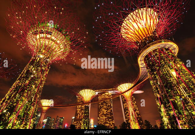 garden by the bay singapore stock image