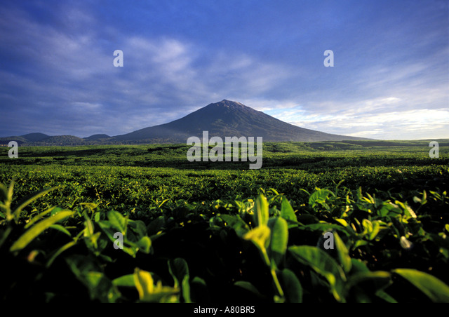 Image Result For Kerinci Volcanoa