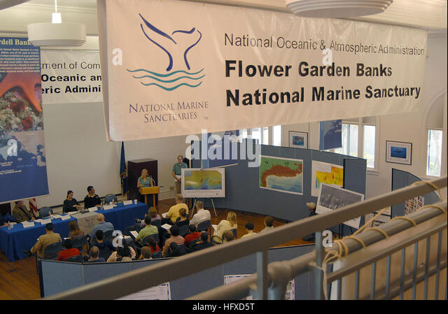 Flower Garden Banks National Marine Sanctuary Stock Photos Flower Garden Banks National Marine