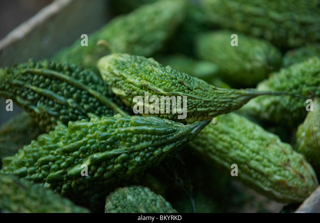 Natives stock photos natives stock images alamy - Bitter melon culture ...