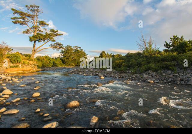 Okato New Zealand  city photos : Stony River, Okato, North Island, New Zealand Stock Image