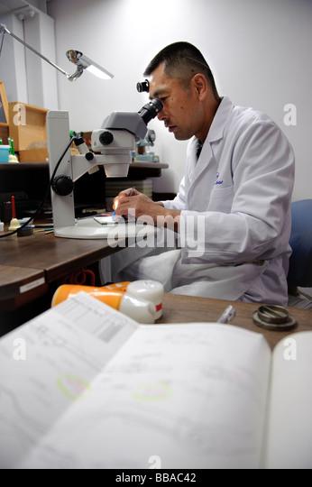 Nakazawa stock photos nakazawa stock images alamy for Domon man 2008