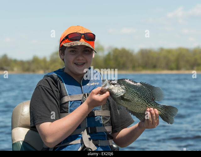 Crappie stock photos crappie stock images alamy for Crappie fishing florida