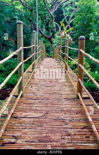Bamboo Bridge In National Tropical Botanical Garden Kauai Hawaii   Stock  Image