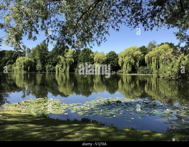 Tri Lakes County Park Yateley Sandhurst Surrey