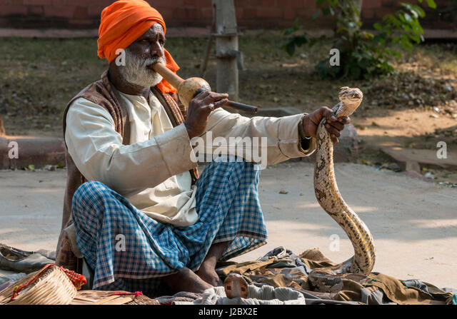 Snake Charmer Village in India 41