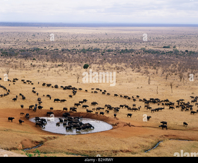 a geography of kenya Birds, birding and bird watching geography in kenya kenya has a land area of  582650 km2 and an estimated population of 32 million.