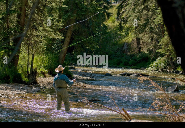 Gore creek vail stock photos gore creek vail stock for Fly fishing vail colorado