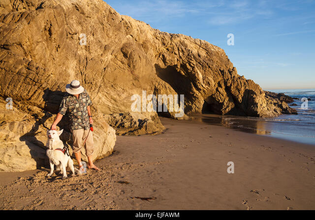Leo Carrillo Camping Dog Friendly
