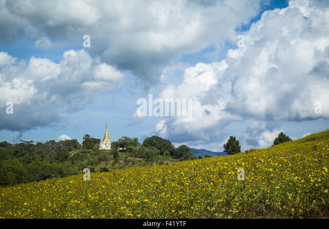 buddhist singles in blue hill Search for retreats in north carolina (nc) home » usa (us) sacred geometry ,senior , silence, singles,spa anglican,baha'i,baptist,benedictine,buddhist.