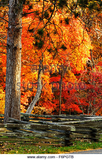 Old Split Rail Fence Autumn Stock Photos Amp Old Split Rail