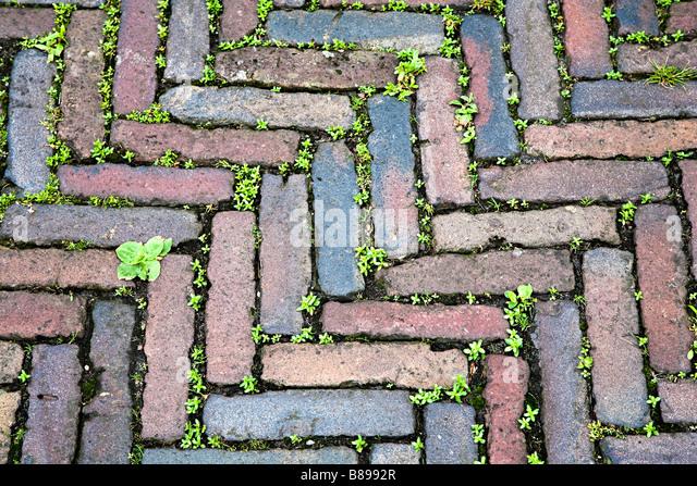 Herringbone pattern of stones used in old street surface enkhuizen