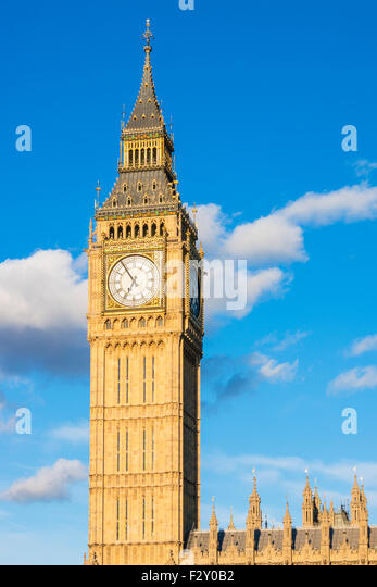 Pugin Stock Photos Amp Pugin Stock Images Alamy