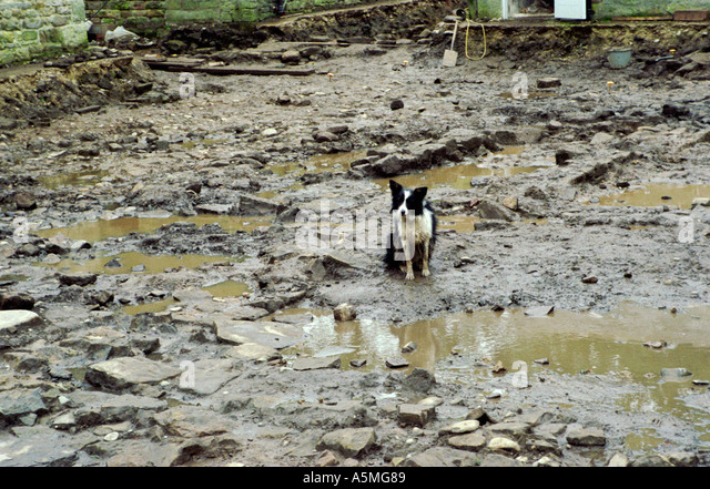 Unhappy Mud Stock Photos Amp Unhappy Mud Stock Images Alamy