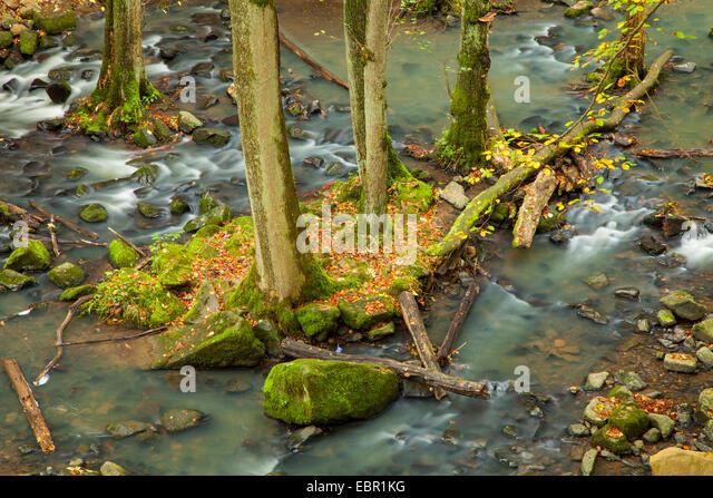 beach hidden Kandel(Rhineland-Palatinate)