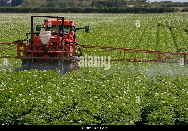 Potato Crop Spraying Norfolk Uk Stock Image
