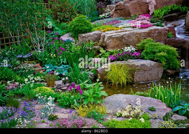 A Colourful Summer Flowering Alpine Garden   Stock Image